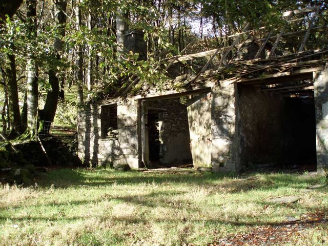 Disused buildings at edge of woodland