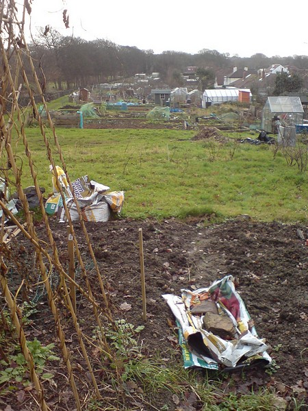 Craggwood Allotments in winter
