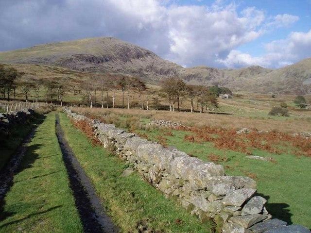 Wall lined track approaching Tal y-llyn