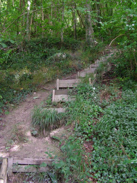 Anglers' steps by the River Stour