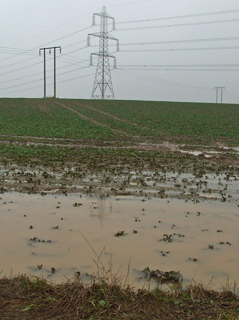 Pylons and puddles