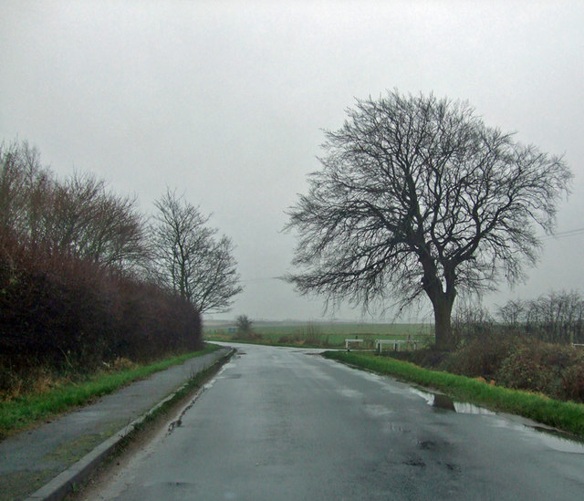 Ferry Road, Barrow Haven