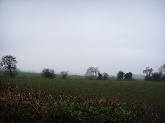 Wappenshall Moor