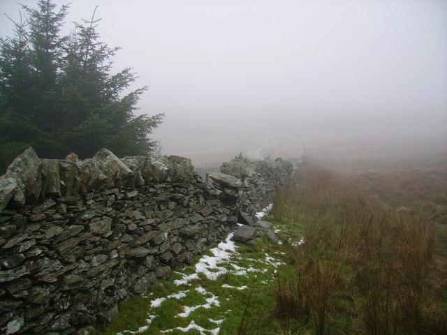 Wall, Garburn Nook