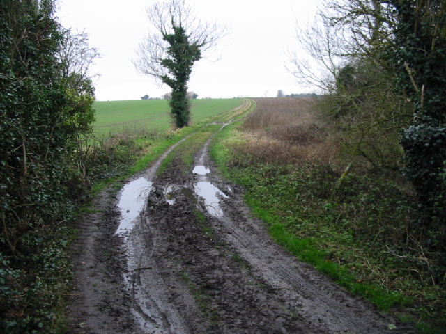 Bridleway from Little Knell Farm