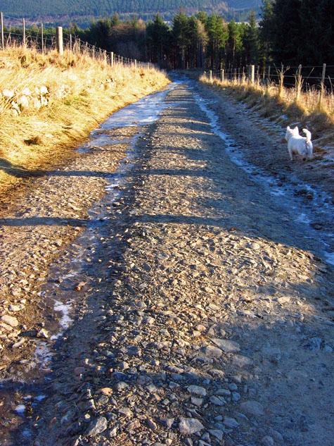 Farm track to Knock Farm, facing east