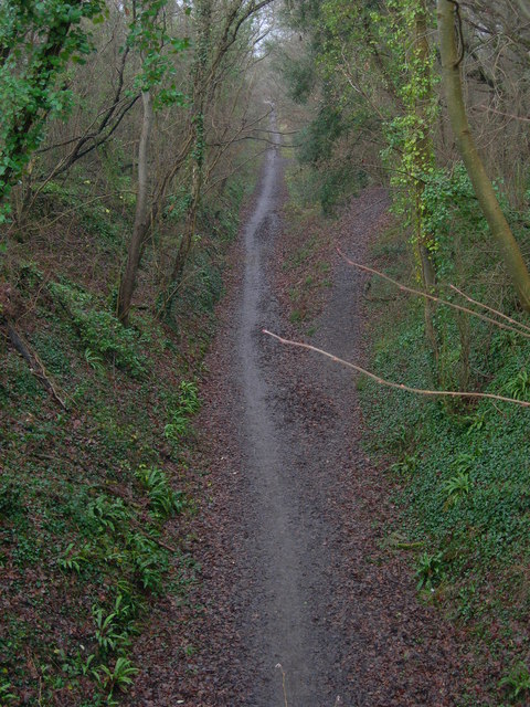 Foot and Cycle Path, Wells