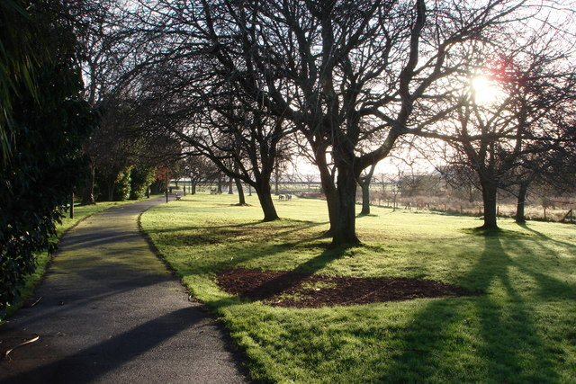 Young's Park - Brilliant sunshine through the trees
