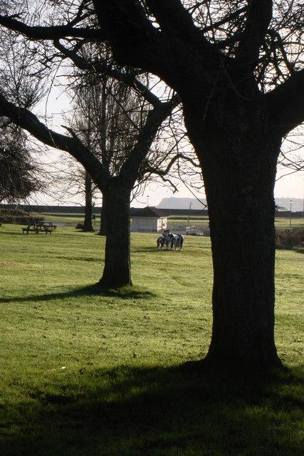 Young's Park, Paignton