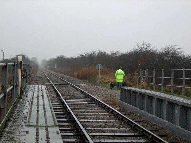 Railway and Dog Walker