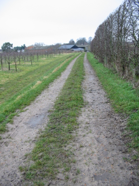 Bridleway to Great Ware Farm