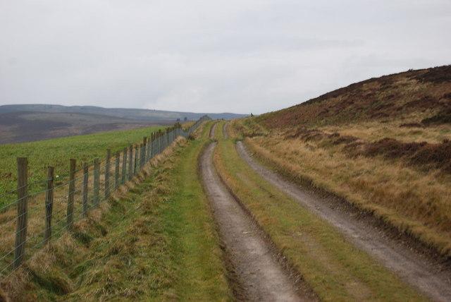 North Berwyn Way above Nant y Bache