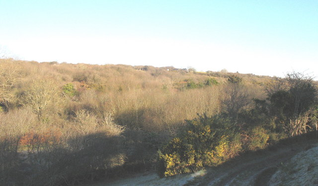 Deciduous woodlands above Oerddwr
