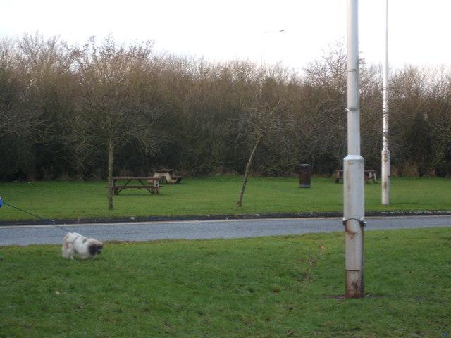 Picnic area Southwaite service station