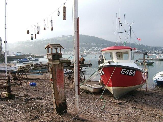 Back Beach boat and bird feeders.