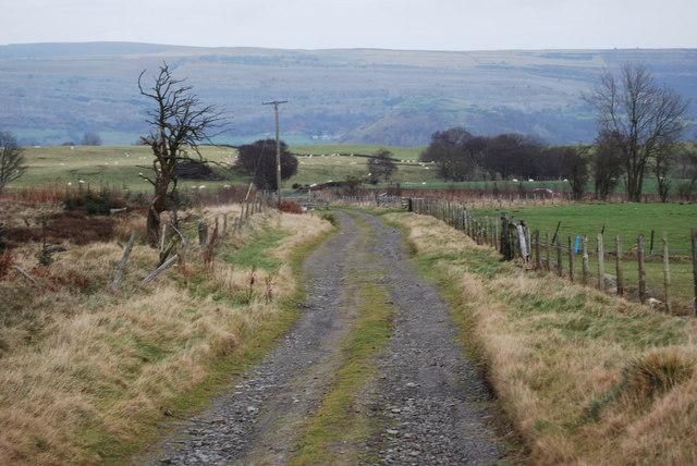 Farm track at Ffynnon Lâs