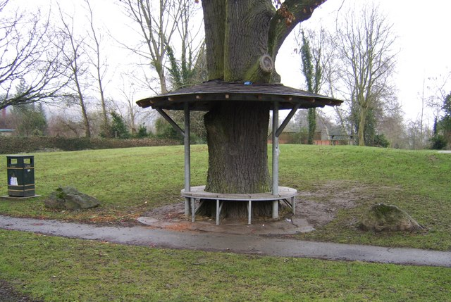 Tree Seat In Leintwardine
