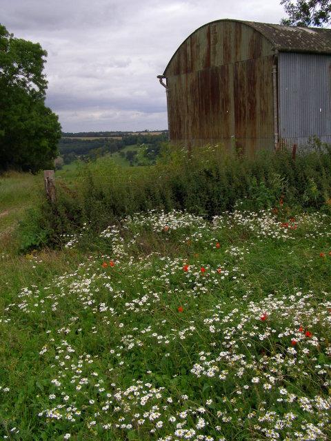Barn north of Hambledon Plantation