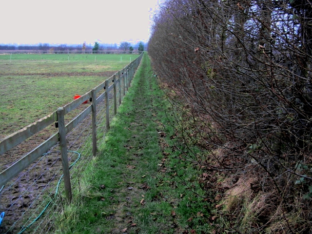 Footpath linking with The Stour Valley Walk