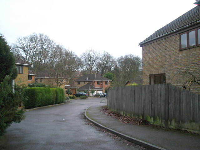 Spur in Weycombe Road