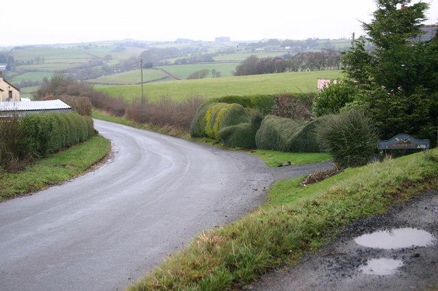 Lane at Warle