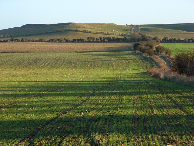 Farmland on the downs, Compton Beauchamp