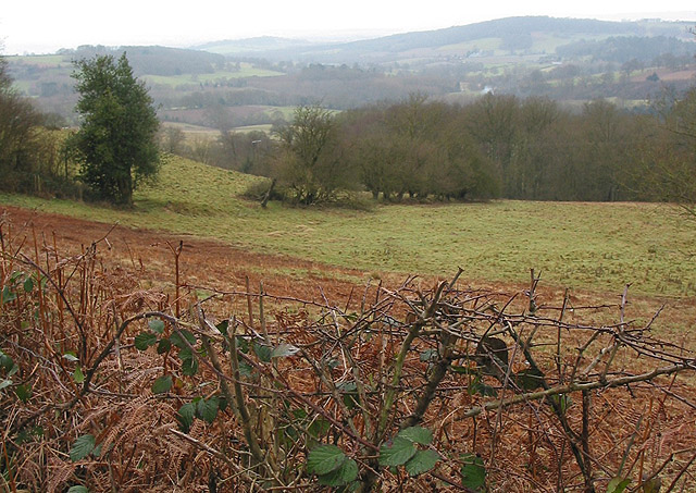 View across Herefordshire