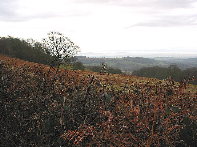 View from The Worcestershire Way