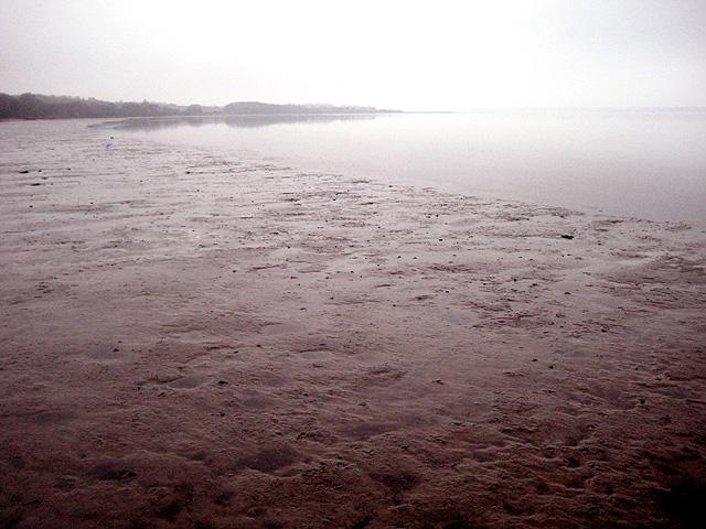 Gloomy day, muddy shore