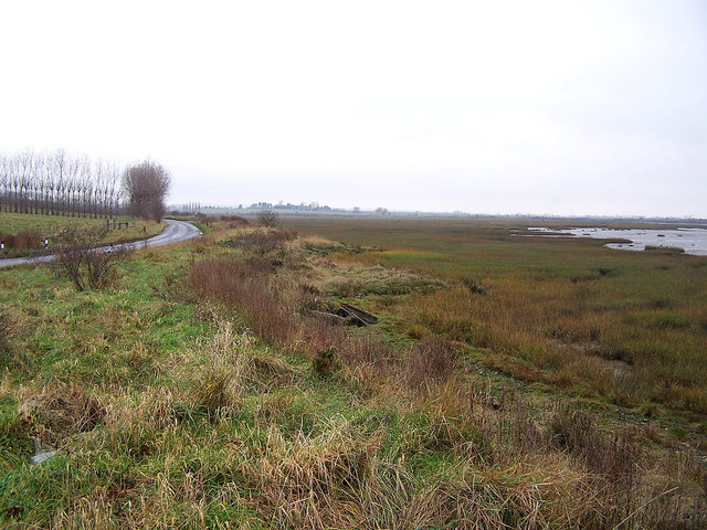 Shoreline of Funton Creek