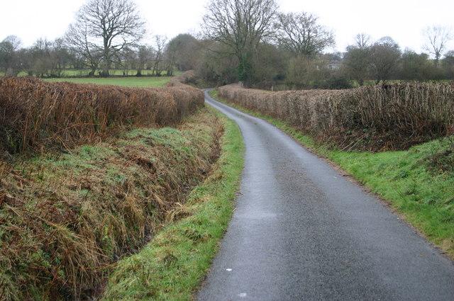 Lane up to Llwyncynog