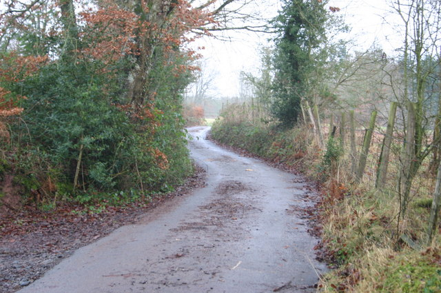 Lane up to Llannerchwen