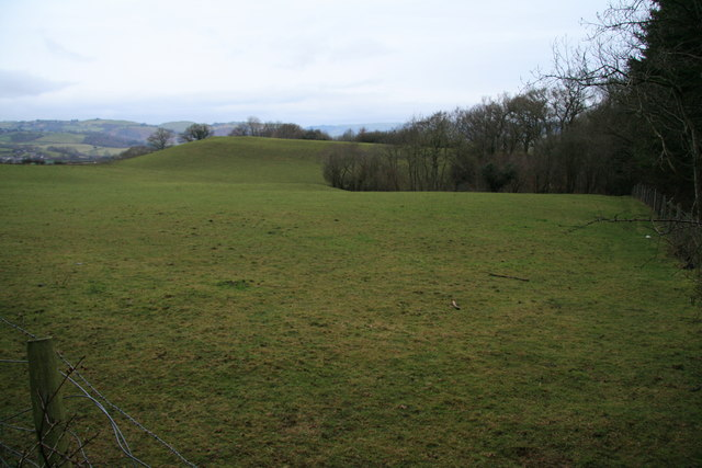Pasture created by enclosure