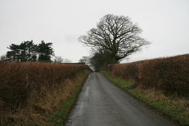 Country lane near Graig