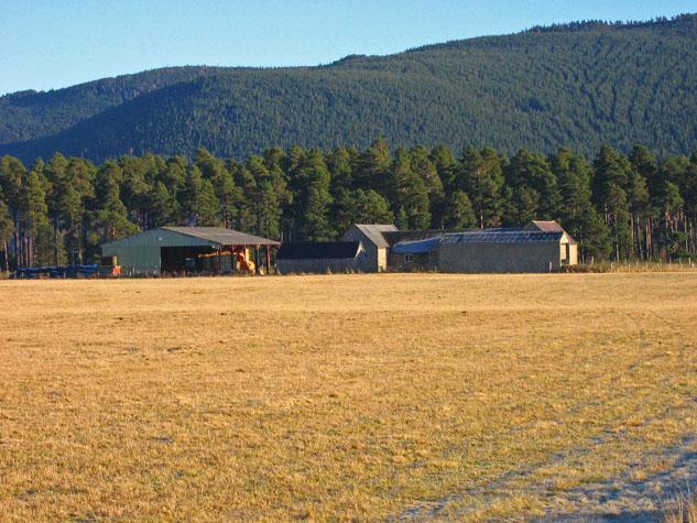 Dalliefour Farm