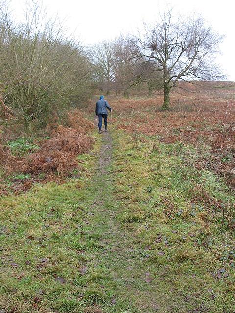 Ascending Swinyard Hill