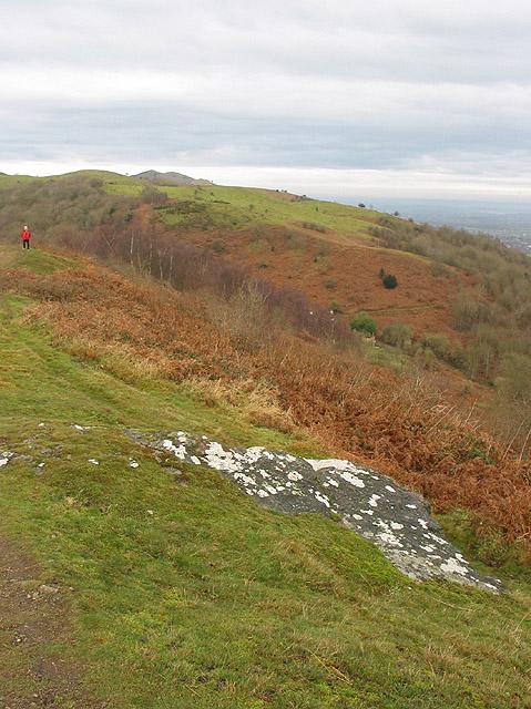 View from Swinyard Hill