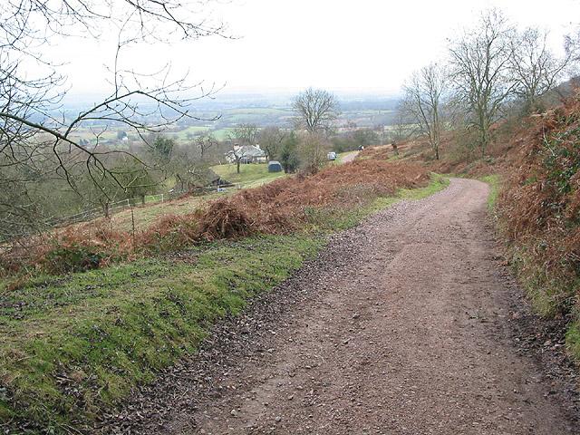 Descending footpath on Swinyard Hill
