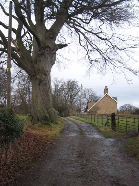 Ochrelands Farm, Hexham