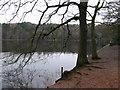 SP0997 : Sutton Coldfield - Bracebridge Pool by Dave Bevis
