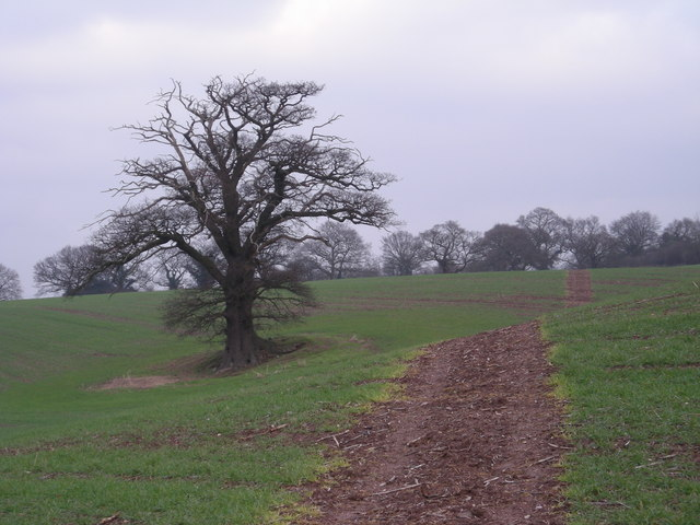 Footpath over open field