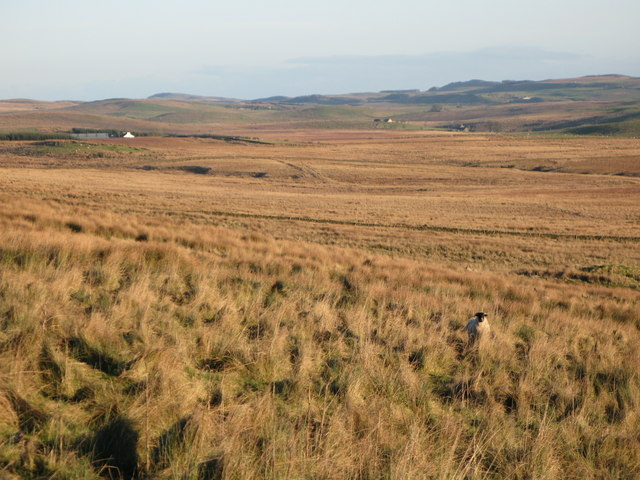 The headwaters of Swallowholes Sike