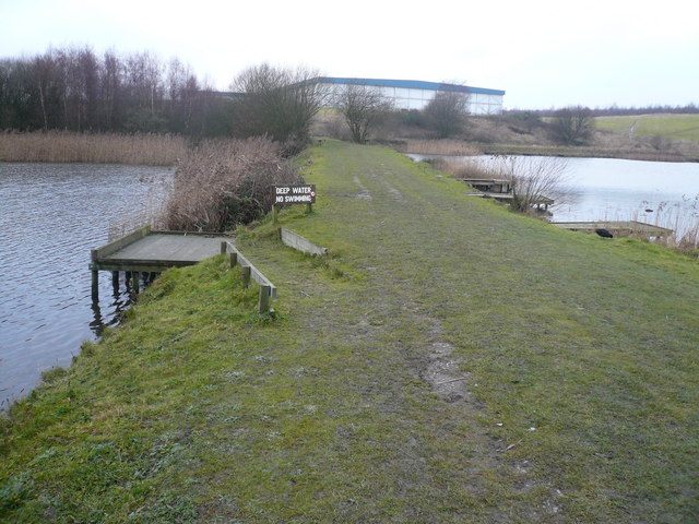 Williamthorpe Ponds Nature Reserve