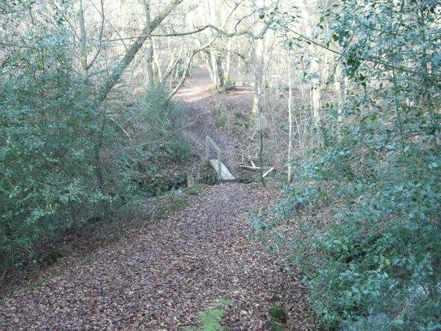 Colgate, Blindman's wood