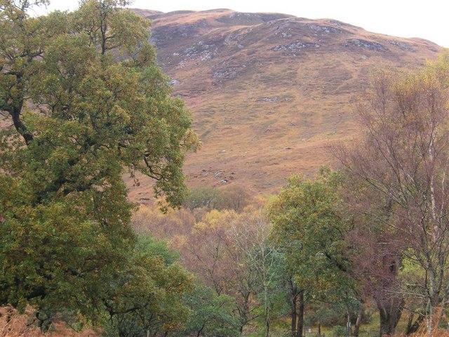 Gleann Sròn a' Chreagain, by Loch Linnhe