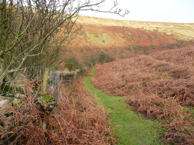Beacons Way near Cwm Mawr