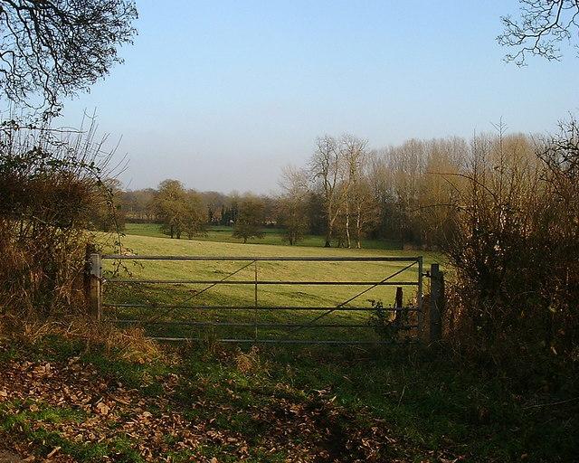 Barton Stacey - Sheep Pasture