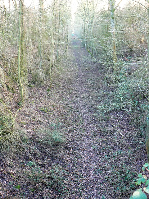 Trackbed of former M&SWJ Railway near Baunton