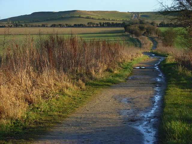 The Ridgeway, Compton Beauchamp