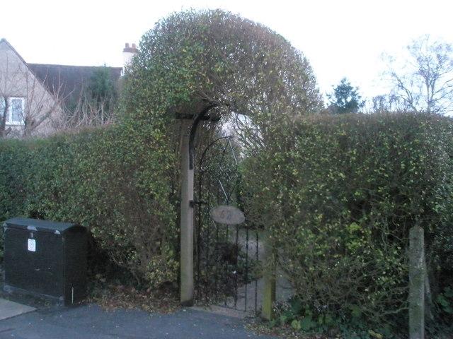 Fine topiary in Victoria Road